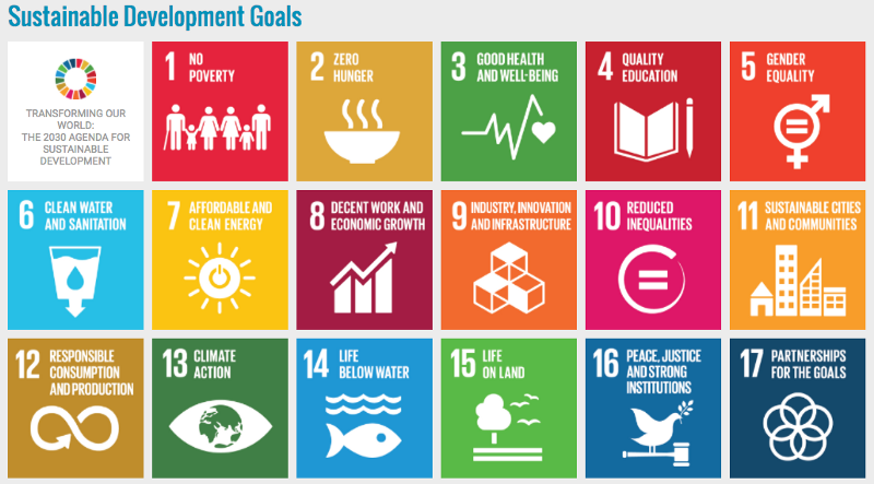 The UN Needs Blockchain to Achieve Its Goals