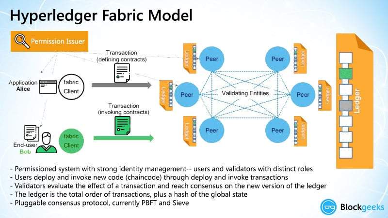 hyperledger fabric model
