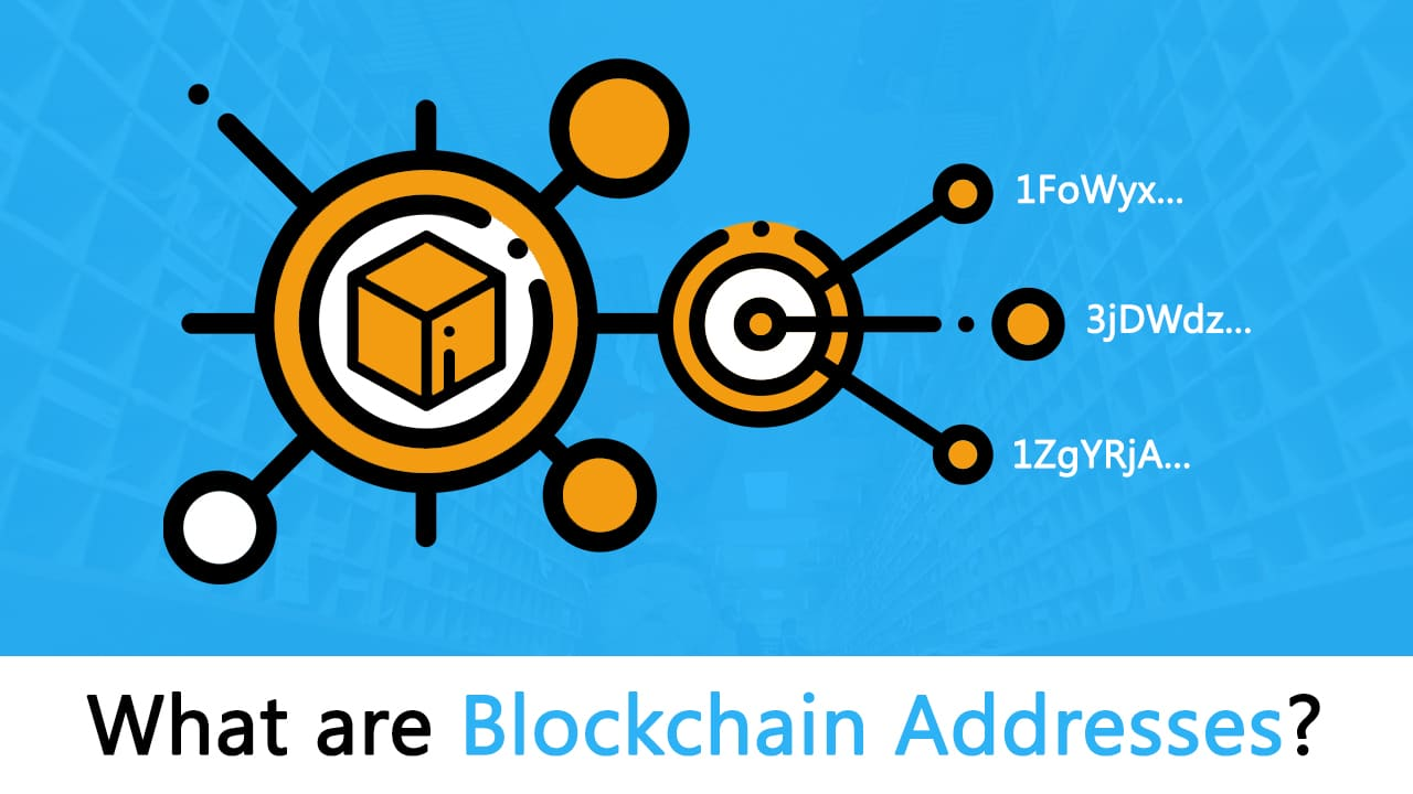 What Are Addresses on Blockchains? Blockchain Address 101