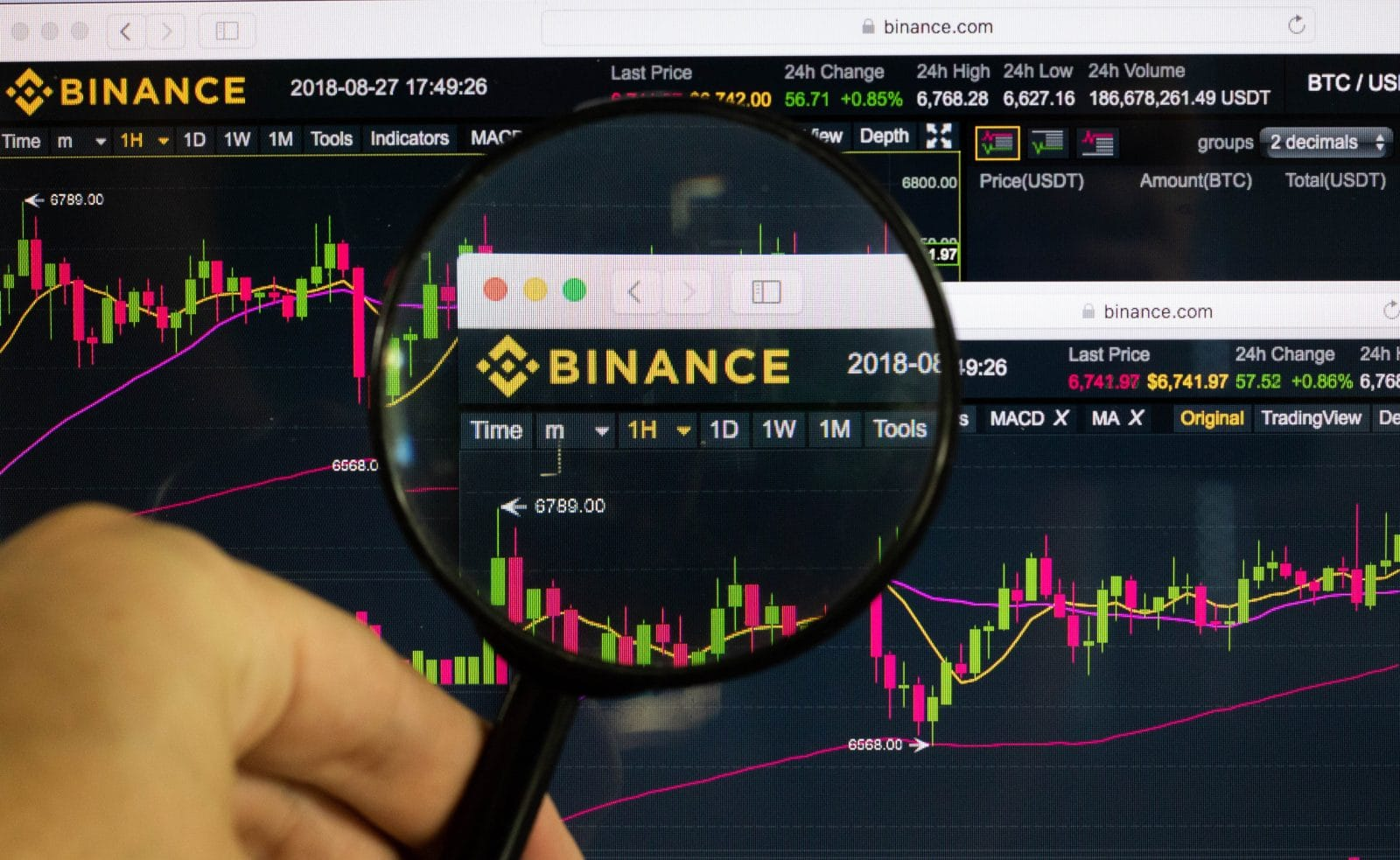 Most Binance Employees Take Crypto as Pay, Why They Bullish On BNB?
