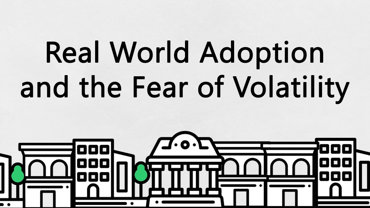 Real World Adoption and the Fear of Volatility