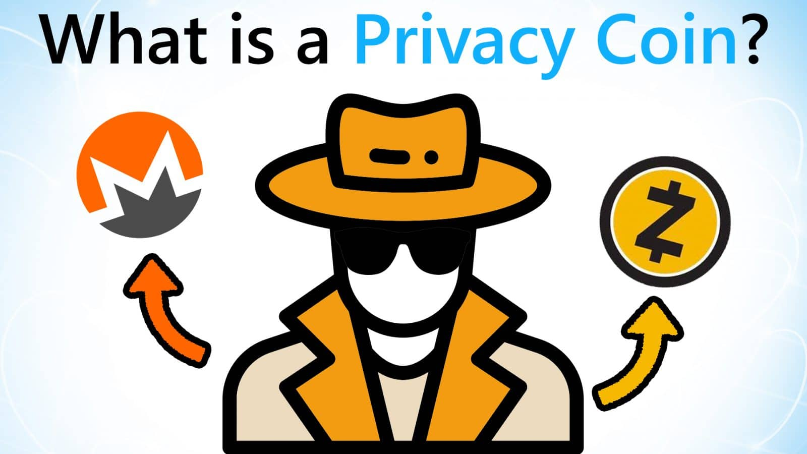 What are Privacy Coins