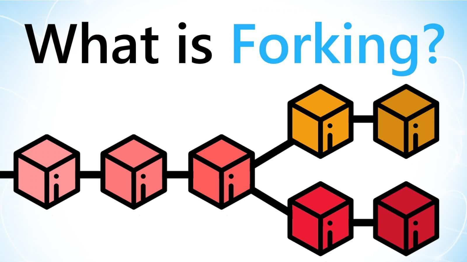 https://blockgeeks.com/guides/bitcoin-forks-guide/